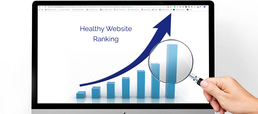 SEO provides healthy website ranking